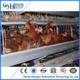 Tipo H Semi-Automation Equipamento de gaiola de frango pode alimentar 50000
