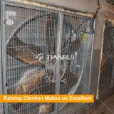 50 Zoll-an der Wand befestigter Absaugventilator für Geflügelfarm