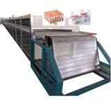 tabuleiro de ovos tabuleiro de ovos de papel da máquina de moldagem tornando preço da máquina