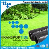 """En van Transportide DIN 856 4sh 5/8 """" voor Hydraulische Slang"""