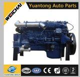 Weichai Wd615 Dieselmotor Euro2 für Sinotruk HOWO, Shcman, Steyr, Beiben, Foton