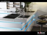 2017년 Welbom Blum 기계설비 고품질 부엌 디자인