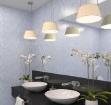 Decoratieve Gevormde Spiegel met Gekleurde Kleur Afgeschuinde Rand