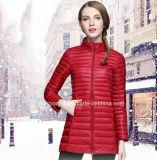 El pato blanco estupendo de la luz el 90% de las mujeres abajo cubre estilo delgado de la chaqueta
