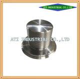 Ar15-aangepast CNC Draaiende Delen van Vliegtuigen, CNC die Delen van het Vliegtuig, CNC machinaal bewerken die de Motor van het Vliegtuig en Delen machinaal bewerken