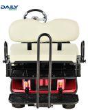 Carrinho de golfe eléctrica do banco duplo / Buggy com 36V motor de 1600 W