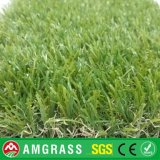 Futsal Artificial Grass e Synthetic Grass per Decoration