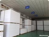 2016 Heet verkoop Blad van het Schuim van pvc van 15mm het Witte Vrije