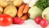 Fruit en de Plantaardige Wasmachine van de Borstel
