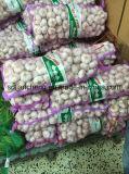 ニンニクの新しい穀物3p袋