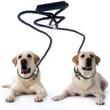 Doppio guinzaglio doppio del cane nessuna maniglia molle di groviglio W per due cani di Smallmedium