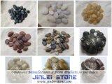 Seixos naturais da rocha da pedra/rio do godo para ajardinar (JL-P01)