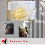 CAS 23454-33-3 Тренболона Гексагидробензилкарбоната [Параболана]