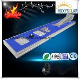 surtidor todo de 30W China en una luz de calle solar del LED