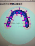 歯科CADの中国の歯科実験室からのカムによって製粉されるインプラント橋