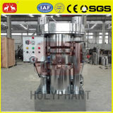 Sesam-Startwert- für Zufallsgeneratoröl-extraktionmaschine