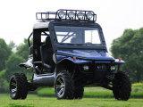 1100cc Dune Buggy 4x4 Go Panier