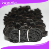 自然なWaveブラジルのVirgin Remy Hair Extension (w-074)