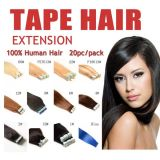 "20 ""100gram Full Head Tape Extensions de cheveux Free Sample"