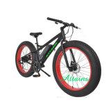 싼 성인 48V 500W 큰 타이어 눈 바닷가 산 전기 먼지 자전거 자전거
