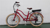 Cheap vélo électrique avec la norme EN15194