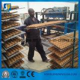 Cadena de producción reciclada automática de la máquina de moldear de la bandeja del papel de pulpa con Multifuction