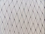 100% de PP Bird anti Bird Net Catching neta para Graps