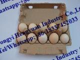 Reciclaje de la bandeja del huevo del papel usado que hace la máquina