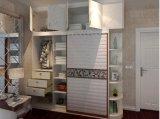 Современные деревянные панели шкафа шкаф (zy-025)
