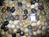 Смешанные плитки камня Cobble цвета