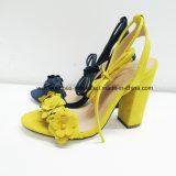 Le nuove donne di disegno comerciano le calzature all'ingrosso robuste del sandalo dell'alto tallone