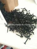 Parafusos da placa de gipsita, parafusos pretos do Drywall na venda
