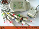 Einteiliges 10-Lead EKG Kabel Fukuda-Denshi mit Widerstand