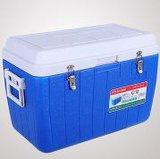 Миниый охладитель автомобиля/коробка более теплого холодильника пластичная для пикника