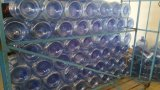 Taizhou recipiente plástico do animal de estimação de 5 galões que faz o preço da máquina