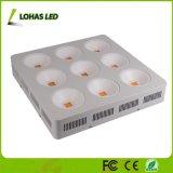 Specturm pieno 1800W LED si sviluppa chiaro per Growing Flowering della pianta d'appartamento e della serra