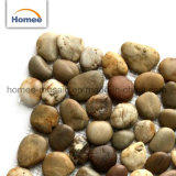Asian Brown guijarros de Piedra Natural Jardín Ploor Backsplash piso de mosaico de piedra