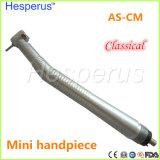 Hesperus mini Handpiece ad alta velocità dentale con l'accoppiamento rapido per l'uso dei bambini dei capretti