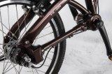 Faltendes Fahrrad mit Welle-Laufwerk/kettenlosem faltendem Fahrrad/faltbarem Fahrrad
