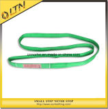 Ce norme TUV GS de polyester pour sangle de levage plat élingue (NHWS-B)
