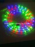 Autour de la lumière de corde d'IMMERSION de 2 fils DEL