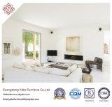Praktische Hotel-Möbel für Wohnzimmer mit Sofa-Möbeln (YB-B-24)