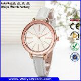 Quartzo Casual clássico de fábrica Senhoras relógio de pulso (Wy-043F)