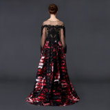 Втулка чувствительного шикарного типа способа прозрачная длинняя и габаритное напечатанное платье вечера цветка