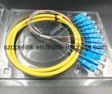12 núcleos enlazados en forma de espiral de fibra óptica, de 0,9 mm, 0,5 m de convergencia de salida, PVC, para la red y conexión inalámbrica