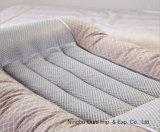 La médecine chinoise traditionnelle de la Santé en voyage d'accueil Fabricant oreiller