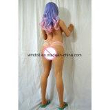 Ashley Wmの人形155cmの性の人形