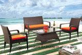 Muebles al aire libre del sofá de mimbre determinado del florero del sofá del balcón (TGBS-005)