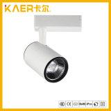 hohe Lumen 45W CREE-PFEILER LED Spur-Lampe, internes Spur-Licht des Fahrer-LED