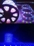 100m 다색 LED 조경 빛 LED 천장 훈장 밧줄 빛